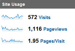 Google Site Usage